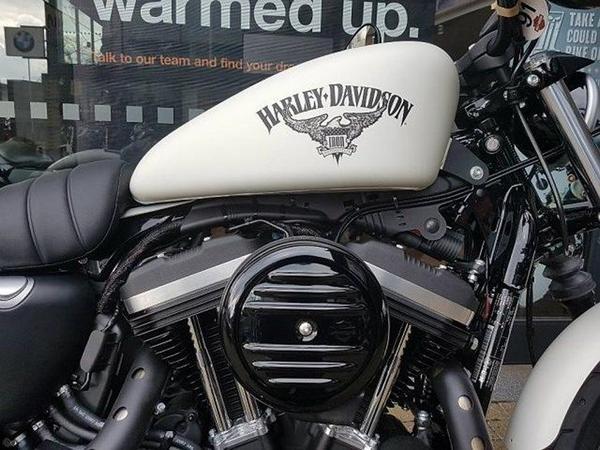 New Harley Davidson Iron 883 2020